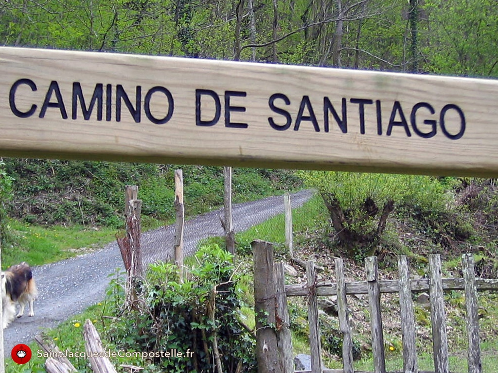 camino frances compostelle